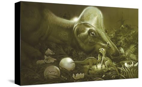 Hypacrosaurus Protecting its Nest and Newborn Hatchlings-Stocktrek Images-Stretched Canvas Print