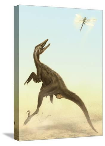 A Small Predatory Sinornithosaurus Jumps at a Dragonfly Flying Above-Stocktrek Images-Stretched Canvas Print
