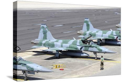 Line-Up of Brazilian Air Force F-5Em at Natal Air Force Base, Brazil-Stocktrek Images-Stretched Canvas Print