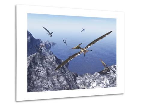Pteranodon Birds Flying Above Coastal Rocks on a Beautiful Day-Stocktrek Images-Metal Print