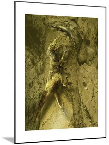 A Velociraptor Attempts to Catch a Lizard as its Next Prey-Stocktrek Images-Mounted Art Print