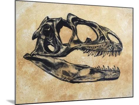 Allosaurus Dinosaur Skull-Stocktrek Images-Mounted Art Print