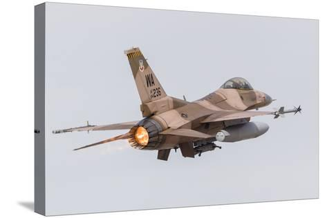 An Aggressor F-16C Fighting Falcon of the U.S. Air Force-Stocktrek Images-Stretched Canvas Print
