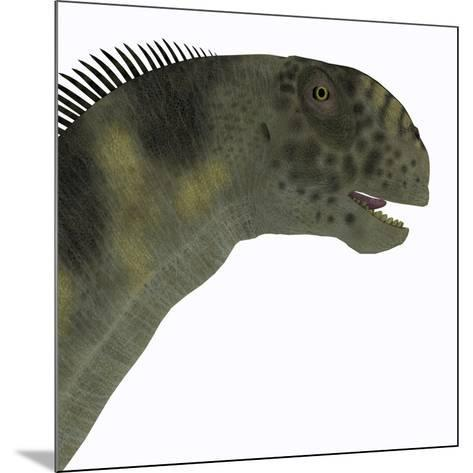 Camarasaurus Dinosaur Head-Stocktrek Images-Mounted Art Print