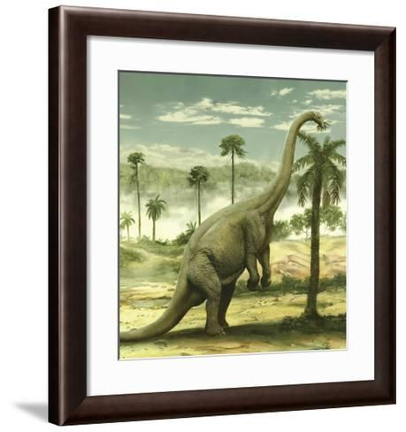 Apatosaurus Feeding on the Leaves of a Tree-Stocktrek Images-Framed Art Print