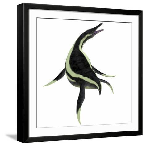 Dolichorhynchops Marine Reptile-Stocktrek Images-Framed Art Print