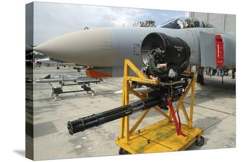 M61A1 20Mm Vulcan Gun from a German Air Force F-4F Phantom-Stocktrek Images-Stretched Canvas Print