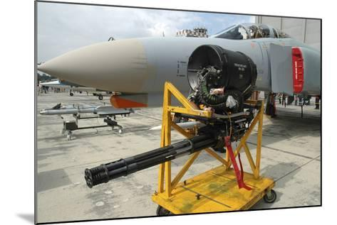 M61A1 20Mm Vulcan Gun from a German Air Force F-4F Phantom-Stocktrek Images-Mounted Photographic Print