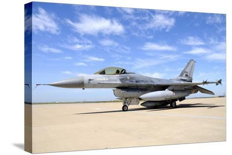 F-16A Falcon from the Portuguese Air Force at Moron Air Base, Spain-Stocktrek Images-Stretched Canvas Print