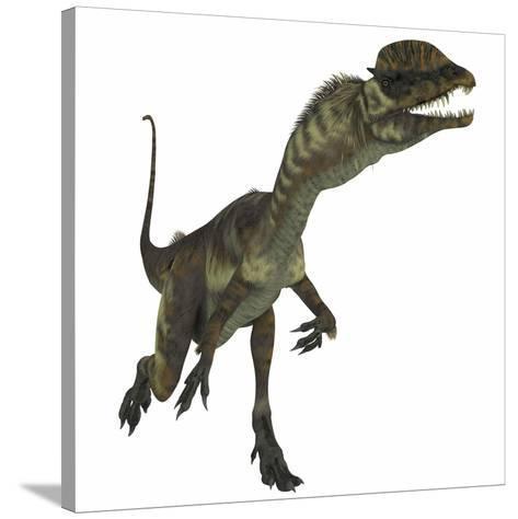Dilophosaurus Dinosaur-Stocktrek Images-Stretched Canvas Print