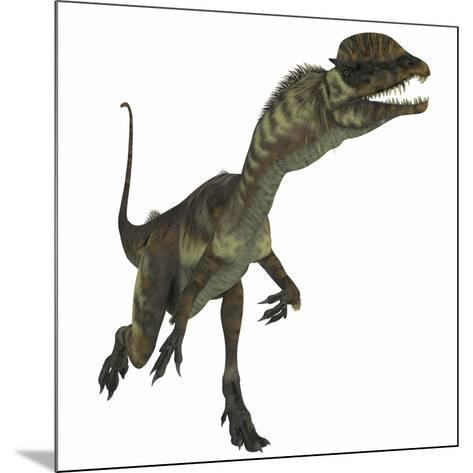 Dilophosaurus Dinosaur-Stocktrek Images-Mounted Art Print