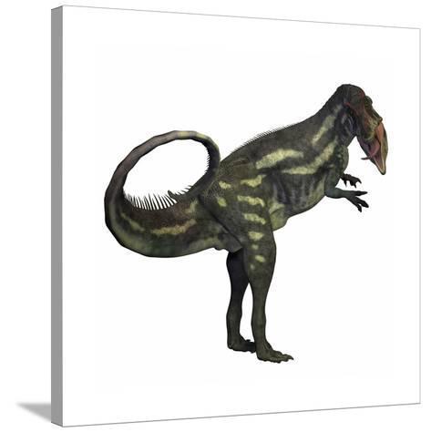 Allosaurus Dinosaur-Stocktrek Images-Stretched Canvas Print
