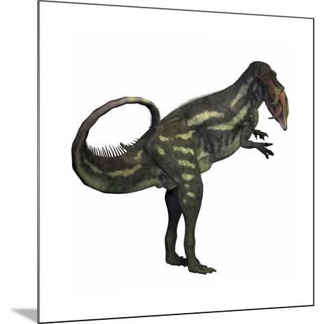 Allosaurus Dinosaur-Stocktrek Images-Mounted Art Print