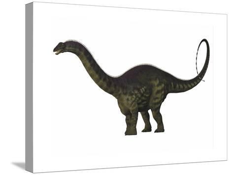 Apatosaurus Dinosaur-Stocktrek Images-Stretched Canvas Print