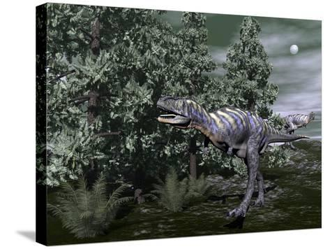 Aucasaurus Dinosaur Amongst Wollemia Trees and Onychiopsis Plants-Stocktrek Images-Stretched Canvas Print