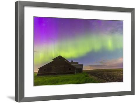 Purple Aurora over an Old Barn in Southern Alberta, Canada-Stocktrek Images-Framed Art Print