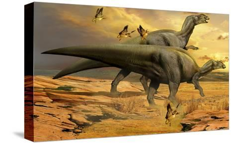 A Pair of Willinakaqe Dinosaurs from the Late Cretaceous of Argentina-Stocktrek Images-Stretched Canvas Print