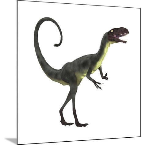 Dilong Dinosaur-Stocktrek Images-Mounted Art Print