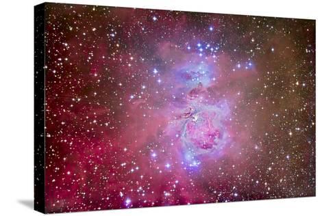 The Orion Nebula Region-Stocktrek Images-Stretched Canvas Print