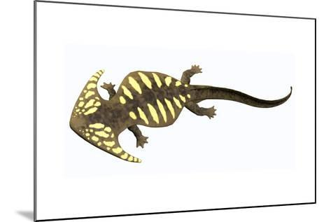 Diplocaulus Amphibian from the Prehistoric Era-Stocktrek Images-Mounted Art Print