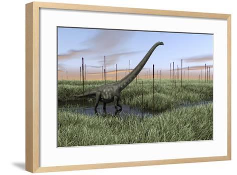 Mamenchisaurus Walking Through Wetlands-Stocktrek Images-Framed Art Print