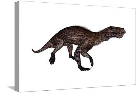 Lycaenops Dinosaur Walking, White Background-Stocktrek Images-Stretched Canvas Print