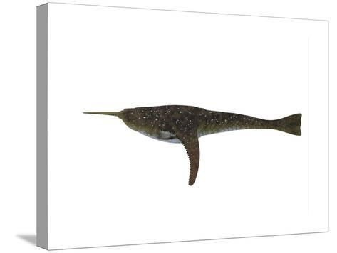 Doryaspis Jawless Fish from the Devonian Period-Stocktrek Images-Stretched Canvas Print