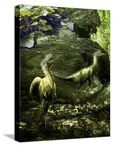 A Pair of Shuvuuia Dinosaurs Roaming a Prehistoric Environment-Stocktrek Images-Stretched Canvas Print