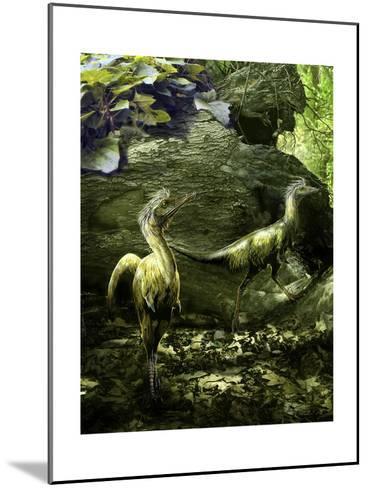 A Pair of Shuvuuia Dinosaurs Roaming a Prehistoric Environment-Stocktrek Images-Mounted Art Print