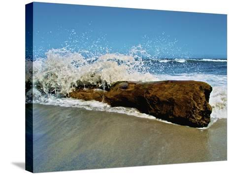 Waves Splashing over Driftwood on Beach-Stocktrek Images-Stretched Canvas Print