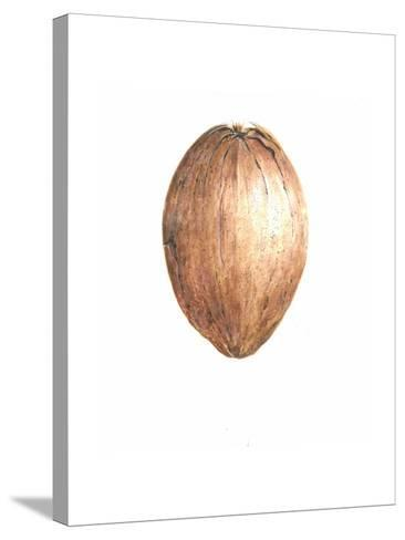 Coconut, 2015-Lincoln Seligman-Stretched Canvas Print