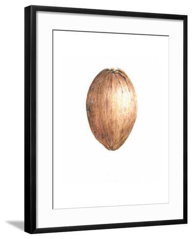 Coconut, 2015-Lincoln Seligman-Framed Art Print