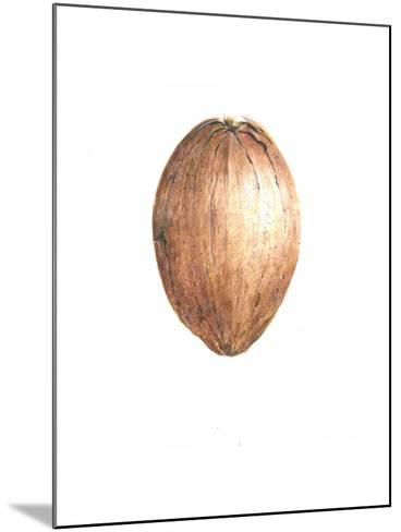 Coconut, 2015-Lincoln Seligman-Mounted Giclee Print