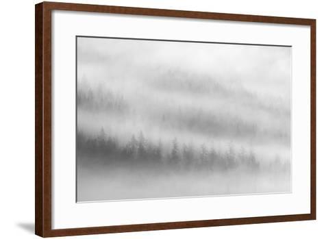 Fog-Ursula Abresch-Framed Art Print