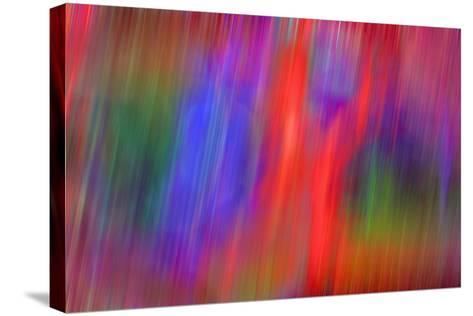 Streaking-Adrian Campfield-Stretched Canvas Print