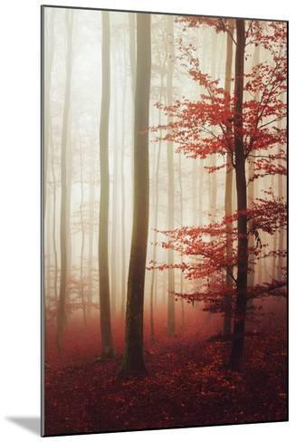 The Way Out-Philippe Sainte-Laudy-Mounted Photographic Print