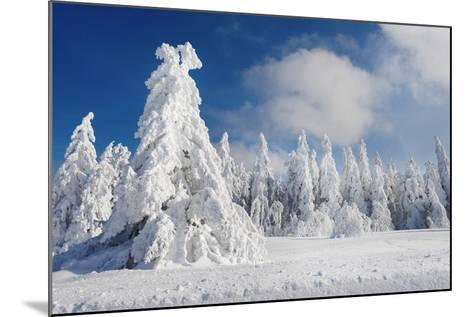 White Party-Philippe Sainte-Laudy-Mounted Photographic Print