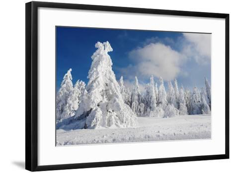 White Party-Philippe Sainte-Laudy-Framed Art Print