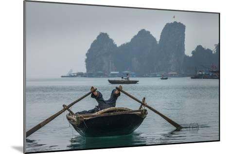 Ha Long Bay, Vietnam-Art Wolfe-Mounted Photographic Print