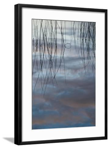 Michigan, Upper Peninsula. Cloud Reflections in Thornton Lake-Jaynes Gallery-Framed Art Print