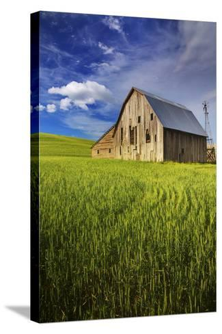 Old Barn Surrounded by Spring Wheat Field, Pr-Terry Eggers-Stretched Canvas Print