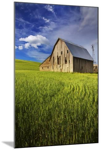 Old Barn Surrounded by Spring Wheat Field, Pr-Terry Eggers-Mounted Photographic Print