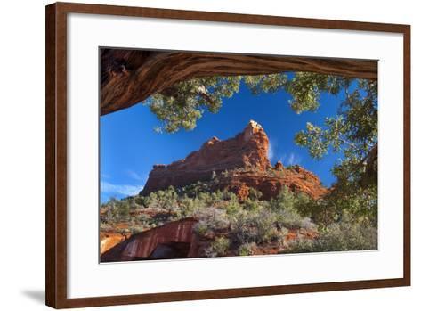 USA, Arizona, Sedona. Juniper Tree Frames Mountain View-Jaynes Gallery-Framed Art Print