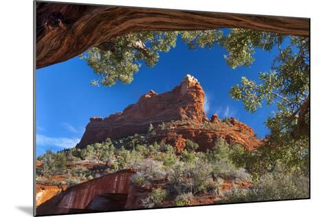 USA, Arizona, Sedona. Juniper Tree Frames Mountain View-Jaynes Gallery-Mounted Photographic Print