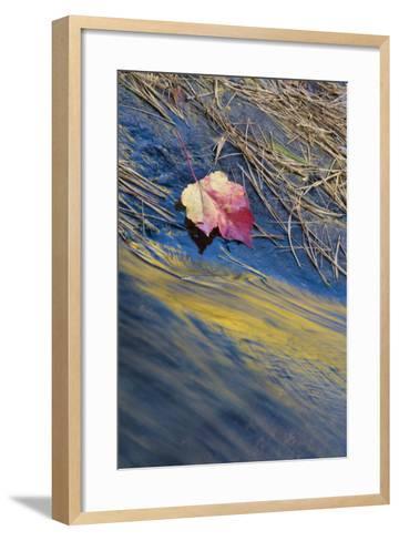 USA, New York, Adirondack Mountains. Reflections in Buttermilk Falls-Jaynes Gallery-Framed Art Print