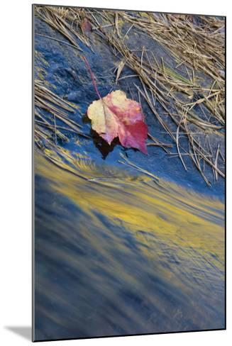 USA, New York, Adirondack Mountains. Reflections in Buttermilk Falls-Jaynes Gallery-Mounted Photographic Print