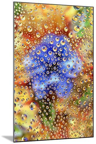 USA, Colorado, Lafayette. Water Bubbles on Glass Table Top-Jaynes Gallery-Mounted Photographic Print