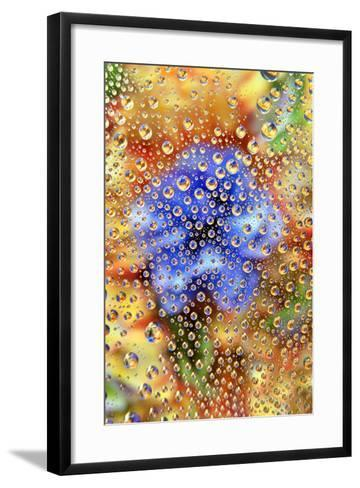 USA, Colorado, Lafayette. Water Bubbles on Glass Table Top-Jaynes Gallery-Framed Art Print