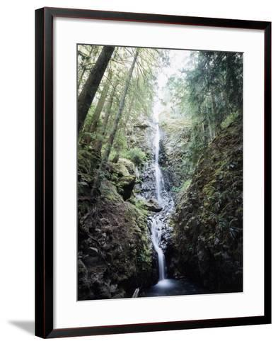 Vancouver Island, Strathcona Provincial Park, Lupin Falls-Christopher Talbot Frank-Framed Art Print