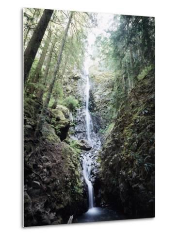 Vancouver Island, Strathcona Provincial Park, Lupin Falls-Christopher Talbot Frank-Metal Print